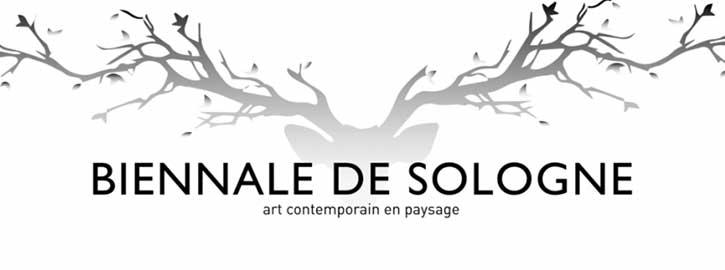 Depuis 6 ans, avec le succès des 3 évènements destinés à la sculpture contemporaine et l'art environnemental, Sculpt' en Sologne a réuni des forces potentielles pour fonder une ambition monumentale rassemblant les talents locaux et d'ailleurs.