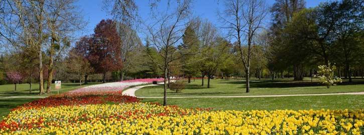 Jardin des Tulipes, Château de Cheverny